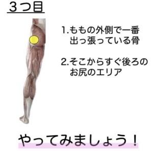 坐骨神経3